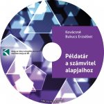 Példatár a számvitel alapjaihoz (CD)