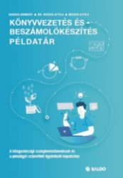 Könyvvezetés és beszámolókészítés példatár